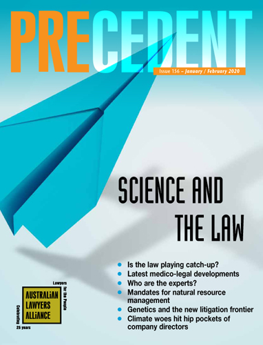 Front cover of Precedent 156